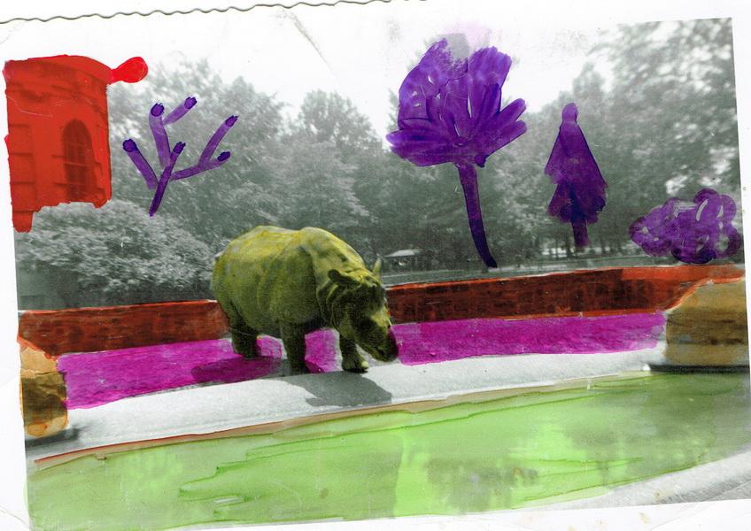 L'hippotame du zoo de New-York, vu par Pierrot quelques années plus tard.